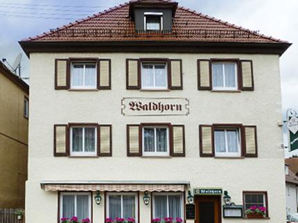 Gasthaus Pension Waldhorn - Schwarzwald